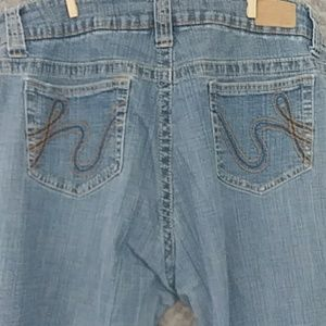 Hydraulic Button Fly Jeans Size 20
